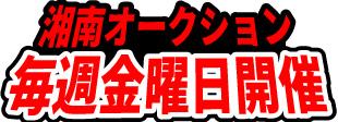 湘南オークション プロのための古物市場